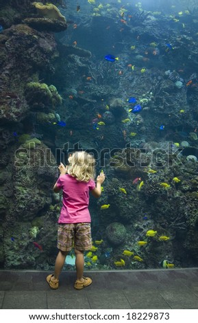 A young girl enthralled with the wonder of the underwater world. - stock photo