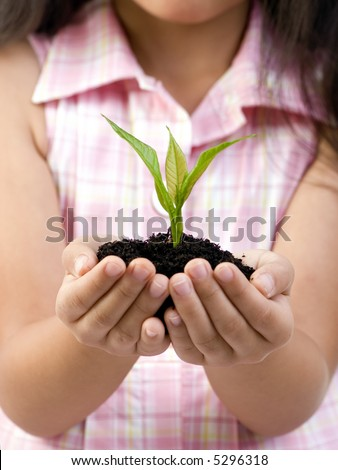 A young girl holds a small seedling that is ready to be planted. Replenishing our environment. - stock photo