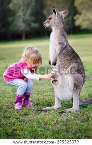 a young girl playing with kangaroo in Australia zoo - stock photo