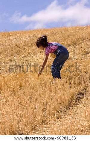 A young girl searches a harvested field for leftover stalks of wheat. - stock photo