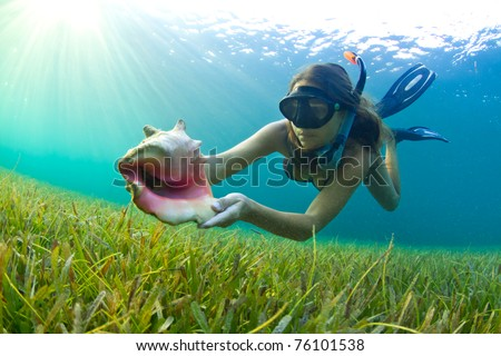 A young girl snorkeling in The Caribbean and finding a Conch shell - stock photo