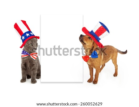 A young kitten and puppy sitting to the side of a blank white sign wearing patriotic American red, white and blue hats and ties - stock photo