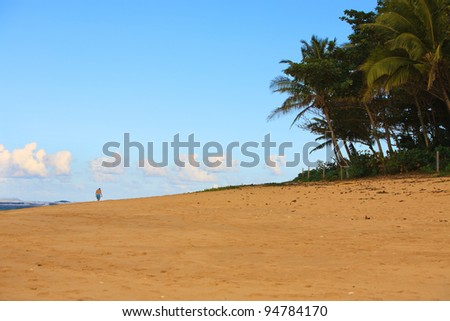 A young man is seen in the distance, walking on a tropical beach, surrounded by the ocean, blue sky with white clouds, palm trees and golden sand. Copy space.