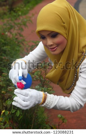 A young muslim girl with hijab (head scarf) doing some gardening work with the red rose flower - stock photo