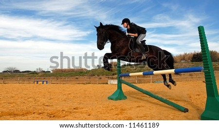 a young teenager and her black stallion in a training of jumping
