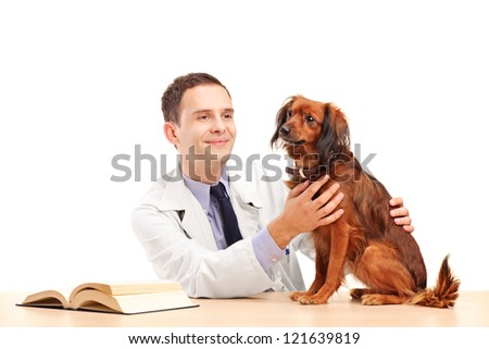 A young veterinarian examining a dog isolated on white background - stock photo