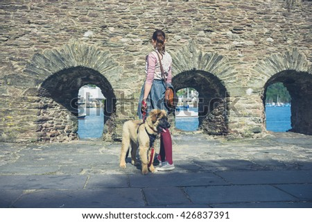 A young woman is walking a Leonberger puppy near an old stone wall by the sea