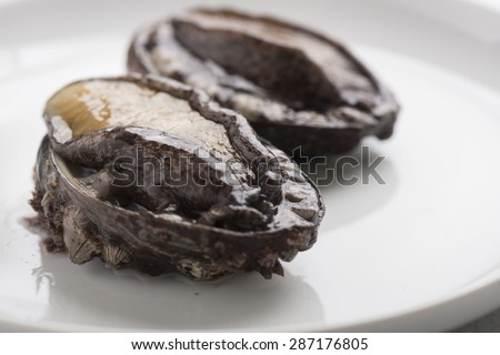 Abalone - stock photo