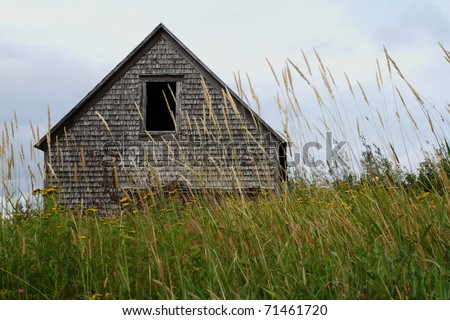 Abandoned barn in tall grass field - stock photo