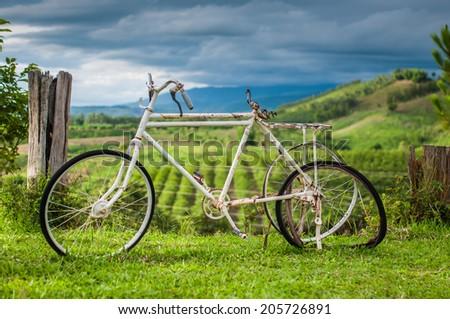 Abandoned bicycle - stock photo