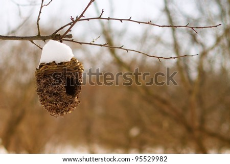 Abandoned bird house covered with snow in winter. - stock photo