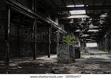 Abandoned building with tree growing out of the floor