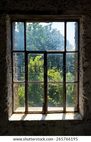 Abandoned  dark room with a dirty window overlook the garden. - stock photo