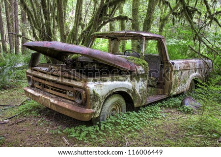 Abandoned Ford pick up truck, from 1963, decaying in the middle of the green rain forest in Olympic National Park, Washington, USA - stock photo