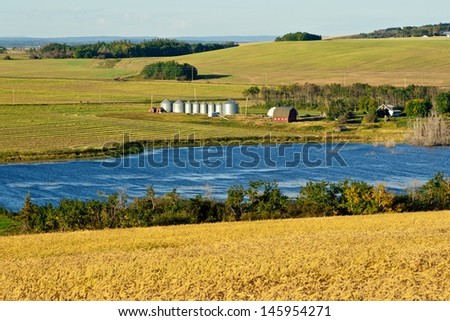 Abandoned granary surrounded by grass and small aspen trees in summer - stock photo