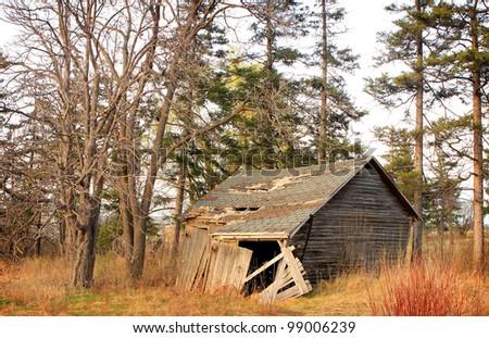 abandoned house among the trees. - stock photo