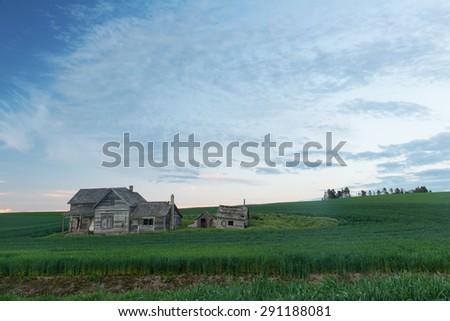 Abandoned house and wheat fields at dusk, Colton, Washington - stock photo