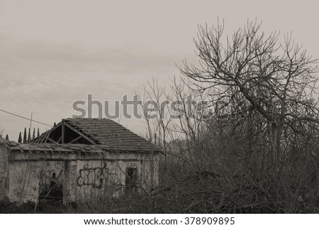 Abandoned house ruin with collapsed roof in the woods and overgrown vegetation under moody sky.