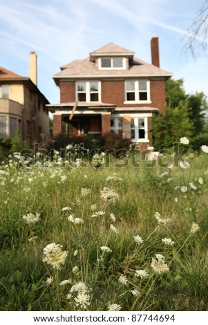 Abandoned houses in Detroit, Michigan, focus on the weeds in front - stock photo