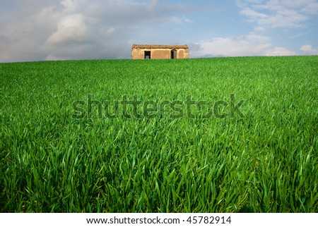 abandoned hut in grassy field and dramatic light - stock photo