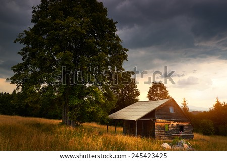 Abandoned hut on the field - stock photo