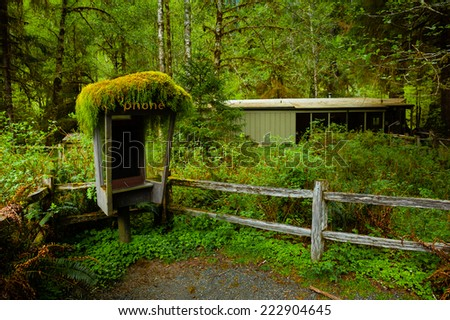 Abandoned phone booth in a tropical forest with an aged old house behind. Anyone making a call? - stock photo