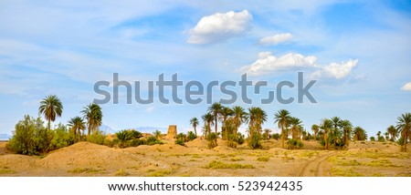 abandoned pise-walled village in a palm grove, a desert part of Iran