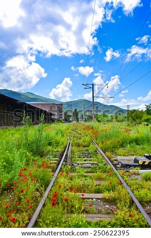 Abandoned railroad in Armenia coated red poppies - stock photo