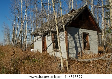 Abandoned small house in dry grass and aspens in fall.  Walls covered with grey asphalt siding - stock photo