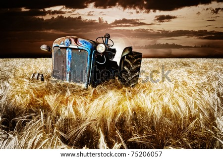 Abandoned tractor in cornfield - stock photo