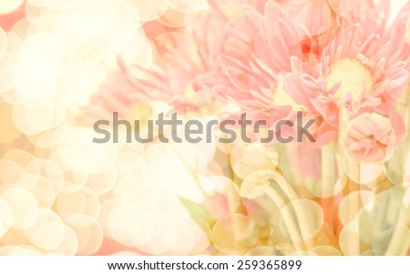 Abatract. Sweet color gerbera in bokeh texture soft blur for background with pastel vintage retro style. - stock photo