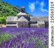 abbaye de senanque with...