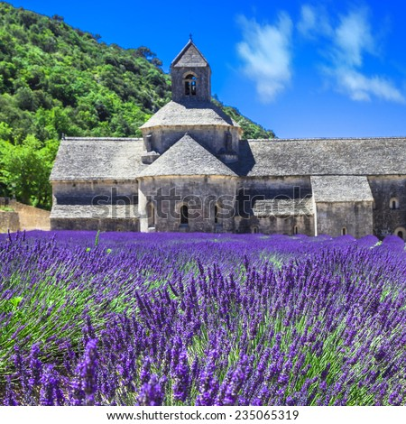 Abbaye de Senanque with blooming lavender field,  Provence, Fran - stock photo