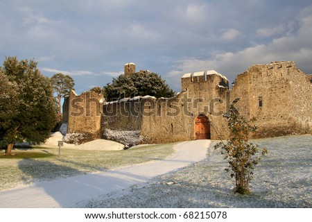 Abbey in Adare at winter time - stock photo