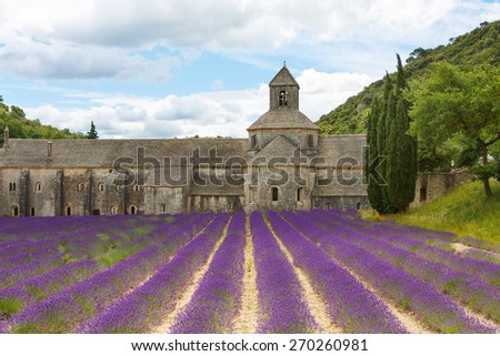 Abbey of Senanque and blooming rows lavender flowers. Gordes, Luberon, Vaucluse, Provence, France, Europe. - stock photo