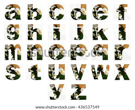 ABC. Alphabet. Learning. Letters. Educstion. Floral alphabet. Flowers. Fod childrens. School. Design. Colorful.  - stock photo