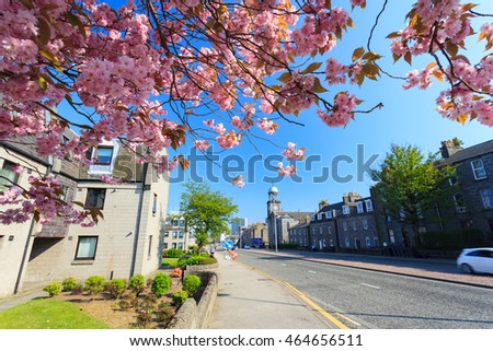ABERDEEN SCOTLAND - 11 MAY 2016 : Sunny Day in Aberdeen City with Cherry Blossom. Aberdeen is the oil capital city of Europe.