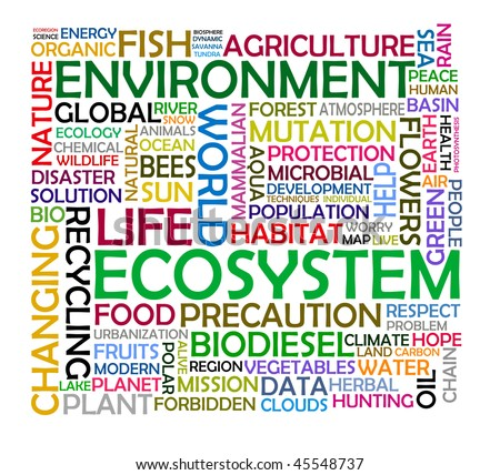 about ecosystem - stock photo