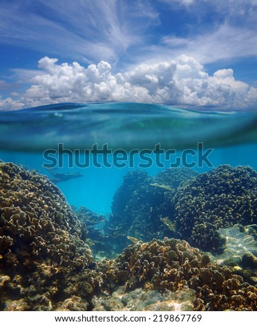 Above and below surface of the Caribbean sea with coral reef underwater and a cloudy blue sky - stock photo