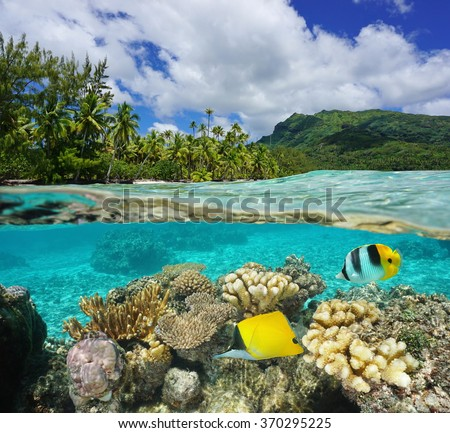Above and below water surface in the lagoon of Huahine near lush shore with corals and tropical fish underwater split by waterline, Pacific ocean, French Polynesia - stock photo