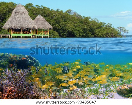 Above and below with thatched cabin over water and coral reef with school of tropical fish underwater, Caribbean sea, Panama - stock photo