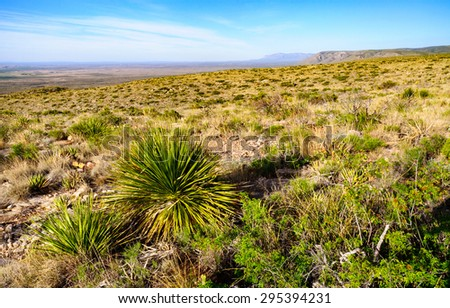 Above on the Arid Grounds of Carlsbad Caverns National Park - stock photo