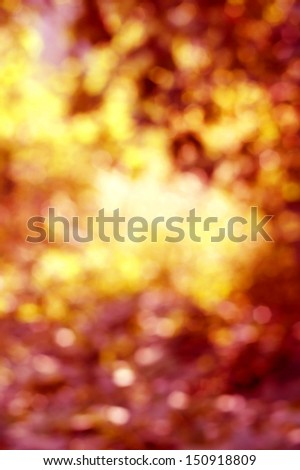 abstract autumn or fall bokeh background