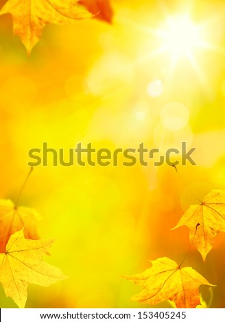 abstract autumn yellow leaves background   - stock photo