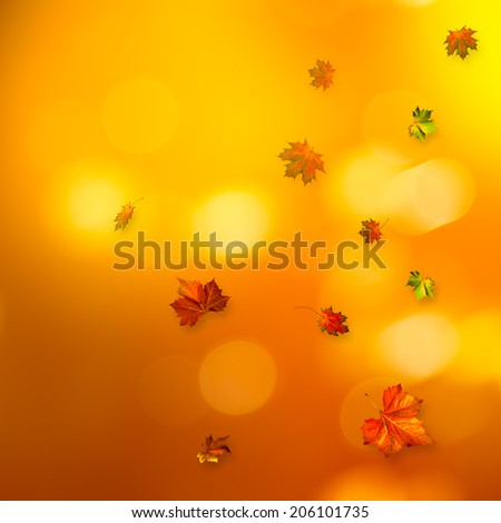 Abstract autumnal backgrounds with beauty bokeh - stock photo