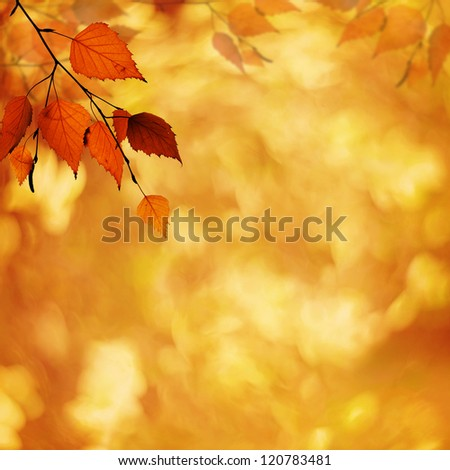Abstract autumnal backgrounds with petzval lens bokeh - stock photo