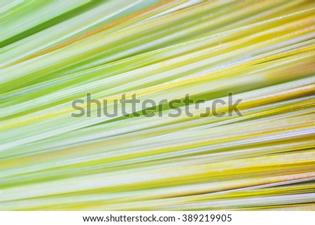 abstract background, a tuft of hair under the microscope - stock photo