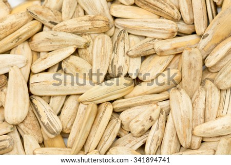 abstract background bunch of sunflower seeds