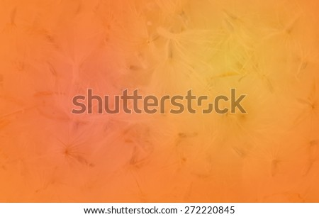 abstract background color tone  - stock photo