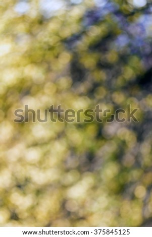 abstract background colorful cold tone bokeh circles background